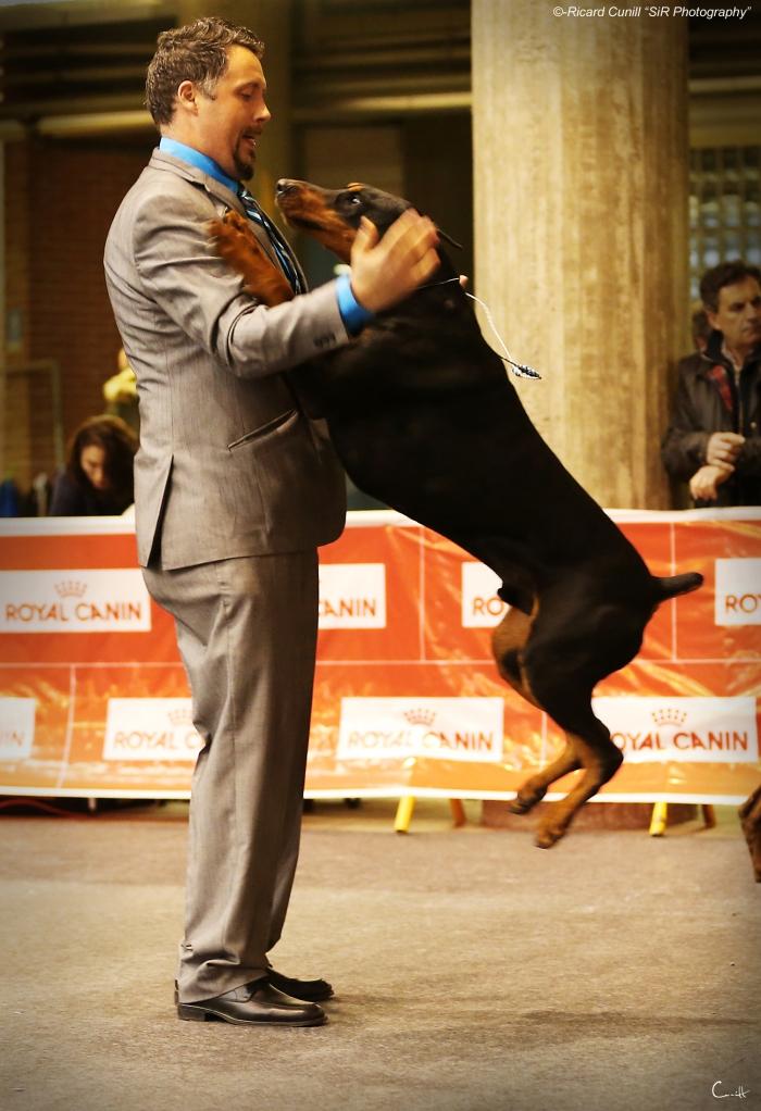 Girona Caninacatalana 2015 02