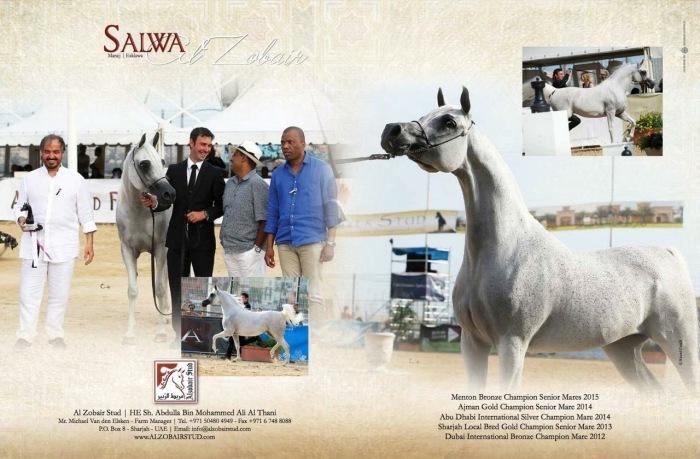 2015 12 18 Salwa Al Zobair