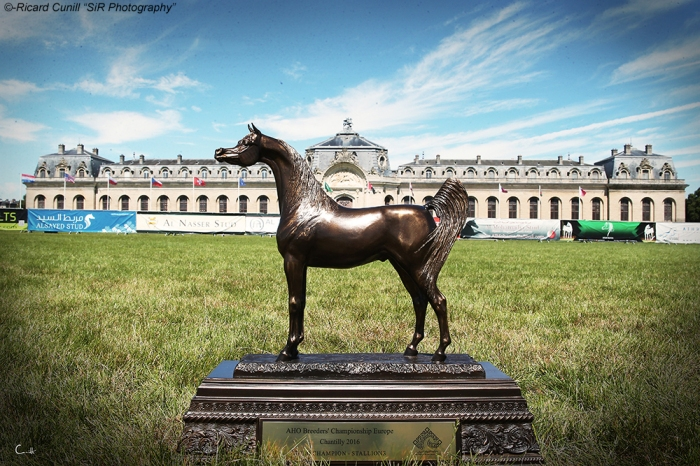 Chantilly 2016_ Trophy European Breeders Championship
